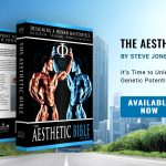Steve Jones The Aesthetic Bible Book Preview